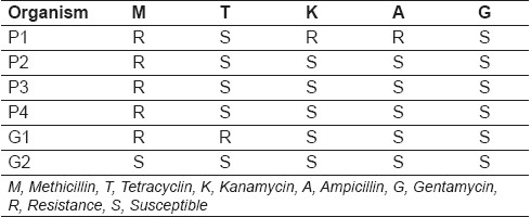 Table 2: The susceptibility of <i>S. aureus</i> to the different antibiotics