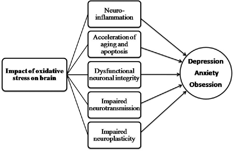 An empirical review on oxidative stress markers and their