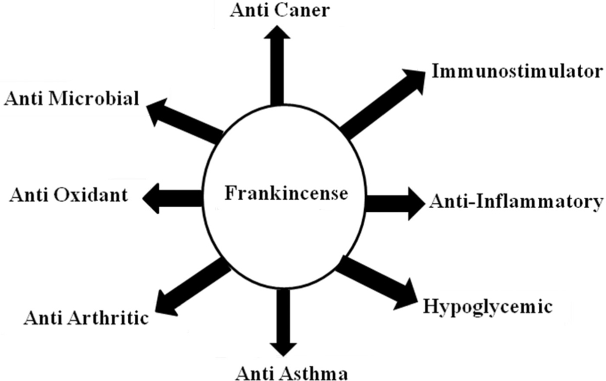 Figure 4 Overall view of medicinal properties of frankincense